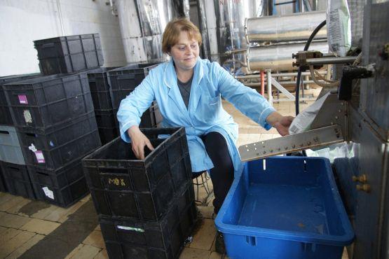 Мастер Наталья Петровна Горбунова работает в цехе фасовки