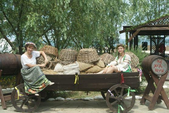 Юные казачки отдыхают в тени старой ивы