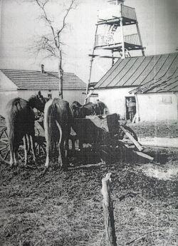 Пожарная служба станицы Новопокровской 1954 года