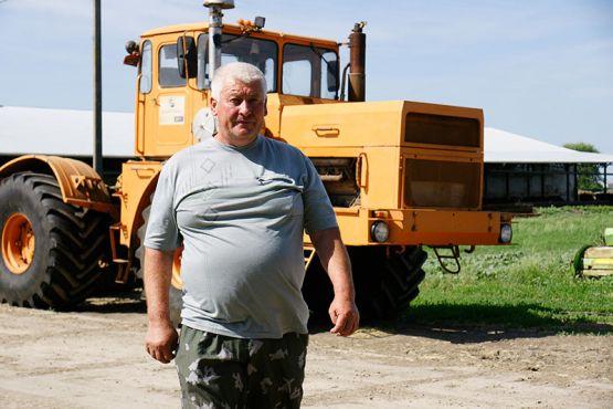 Во время заготовки кормов Александр Караваев на «Кировце» утрамбовывал сенажную яму