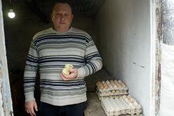 ИП глава КФХ Виктор Терехов ведет многопрофильное хозяйство