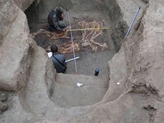 Вот какие находки, открывшиеся археологам, 4000 лет хранила земля новопокровская