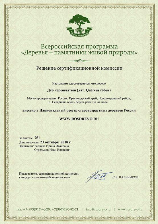 Сертификат, подтверждающий, что дерево внесено в национальный реестр старовозрастных деревьев