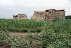Каменные быки, построенные больше века назад, возвышаются посреди полей за поселком Восход. Здесь, по велению Николая II, должна была проходить железная дорога
