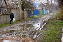 Мария Михайловна возвращается с рынка. В одном пакете — покупки, в другом — сменная обувь