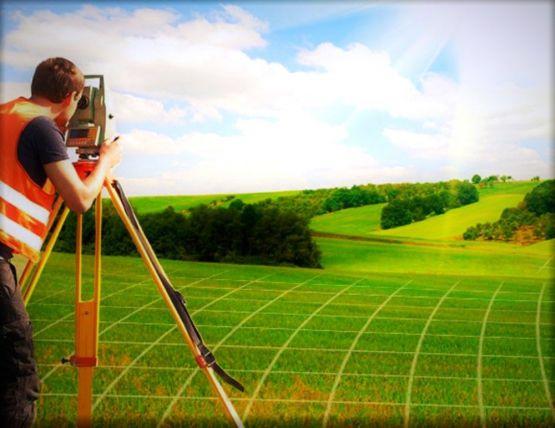 Кем проводятся землеустроительные процедуры